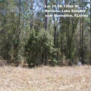 SE-126th-St-14-15-17-Rainbow-Lakes-Est-Dunnellon-FL-34431