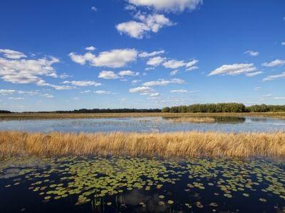 Bright-Lake-Circle-Groveland-FL-34748