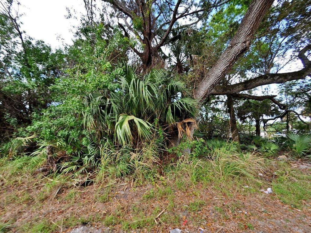 0-Evergreen-Fort-Pierce-FL-34947